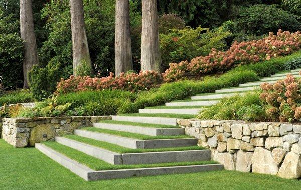 Why You Should Hire a Landscape Designer?